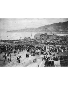 Crowd at the departure - Wellington