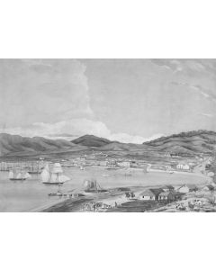 View of part of the town - Wellington
