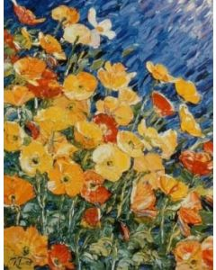 Sunlit Poppies - Richard Ponder