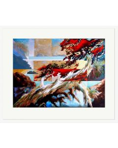Pohutukawa Abstract - Harold Coop