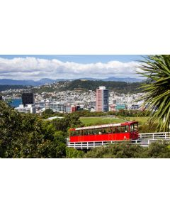 Wellington Cable Car - Sandy Abbot