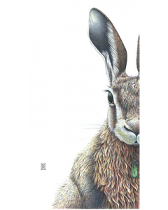 Forest Hare - Wild Honey Art