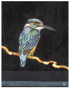 Kingfisher Dark - Wild Honey Art